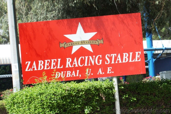 Zabeel Racing Stable, Dubai
