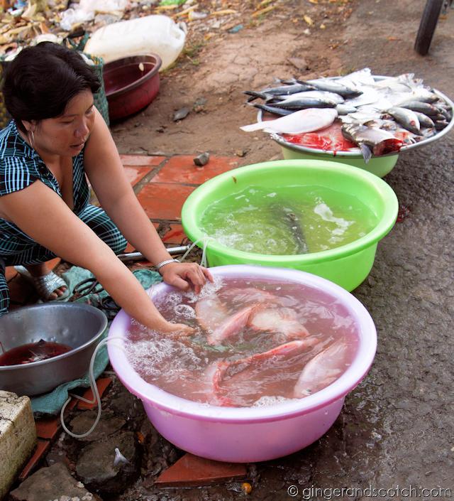 Mekong Homestay - Market - Fresh Live Fish
