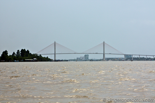 Mekong - bridge