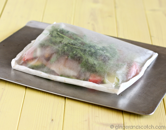 Easy Peasy Fish in a Bag - Make ahead a few hours