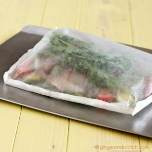 Easy Peasy Fish in a Bag