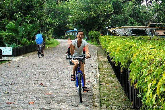 biking la digue