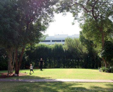 Lawn - Jumeirah Creekside Hotel