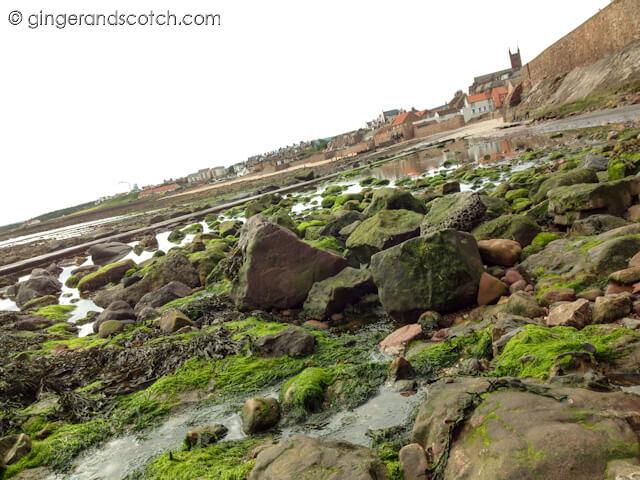 Running along Dunbar Coast